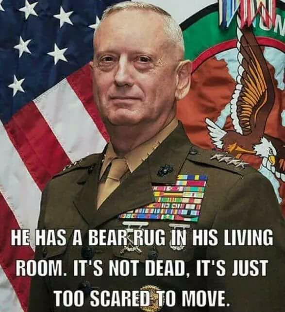 General Mattis Quotes And Sayings (3)