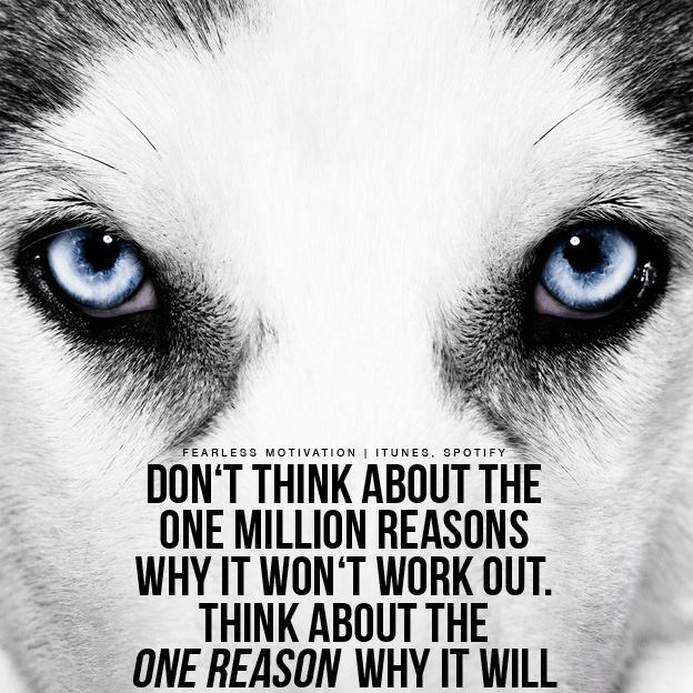 Wolf-quotes-and-sayings